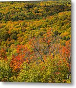 Summit Peak Autumn 6 Metal Print