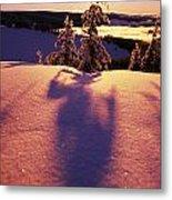 Sun Casting Shadows On Snow Covered Metal Print