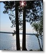 Sun Shining Through Trees Metal Print