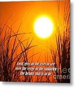 Sundown Beauty Metal Print