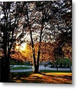 Sundown In Stanley Park Metal Print