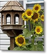 Sunflower Bird Feeder Metal Print