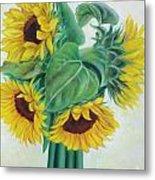 Sunflower circle Metal Print