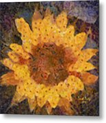 Sunflower Season Metal Print
