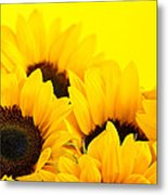 Sunflowers Metal Print by Elena Elisseeva