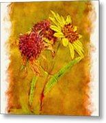 Sunflowers In Fall Metal Print
