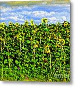 Sunflowers In France Metal Print by Joan  Minchak