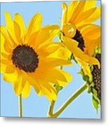 Sunflowers Sky Metal Print