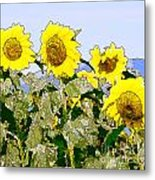 Sunflowers Sunbathing Metal Print