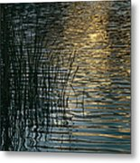 Sunlight Reflects On Rippled Water Metal Print