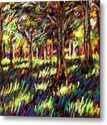 Sunlight Through The Trees Metal Print