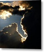 Sunlit Brilliance Metal Print