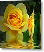 Sunny Delight And Vase 2 Metal Print