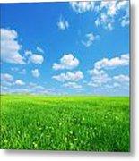 Sunny Spring Landscape Metal Print
