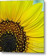 Sunny Summer Sunflower Metal Print