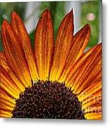 Sunrise Floral Metal Print