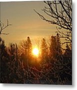 Sunrise In The Trees Metal Print