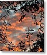 Sunrise Leaves Metal Print