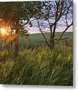 Sunrise On A Farm During The Summer Metal Print