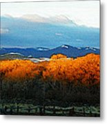 Sunrise On Trees Metal Print