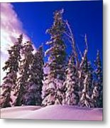Sunrise Over Snow-covered Pine Trees Metal Print