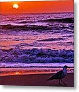 Sunrise Sea And Seagull Metal Print