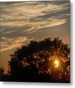Sunset At The Oasis Metal Print