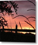 Sunset Bird Metal Print