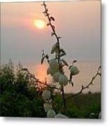 Sunset Bouquet Metal Print