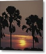 Sunset On Shire River Metal Print