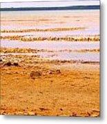 Sunset On The Mud Flats Metal Print