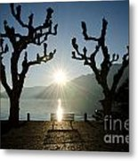 Sunset Over A Lake With Trees Metal Print