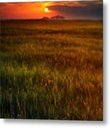 Sunset Over Field Metal Print
