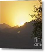 Sunset Over The Sinai Desert  Metal Print