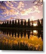 Sunset Reflection In A Park Pond Metal Print by Craig Tuttle