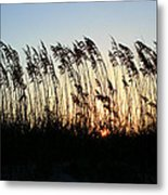 Sunset Sea Oats Metal Print