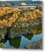 Sunset Tidepool Larry Darnell Point Lobos Central California Landscape Metal Print