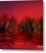 Sunset Trees Metal Print