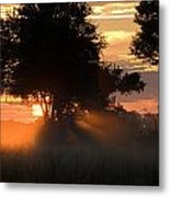 Sunset With Silhouetted Trees Metal Print
