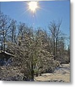Sunshine In The Snow Metal Print