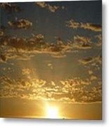 Sunshine Moment Metal Print