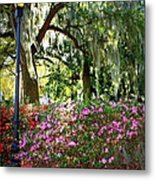 Sunshine Through Savannah Park Trees Metal Print