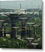 Supertrees At The Gardens By The Bay In Singapore Metal Print