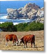 Surf And Turf Two Metal Print by Jeff Lowe