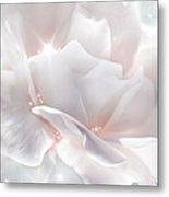 Surprise Rose Metal Print by Svetlana Sewell