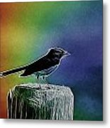Surrounded By Color Metal Print