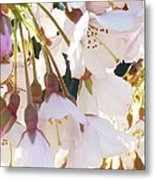 Surrounded By Spring Metal Print