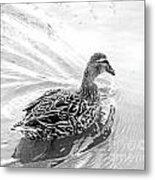Susie Duck Metal Print