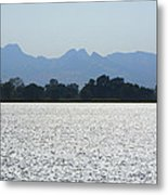 Sutter Buttes And Flooded Rice Field Metal Print