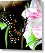 Swallowtail Metal Print